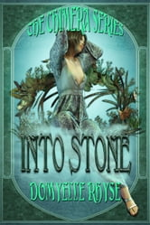 Into Stone ebook by Domyelle Rhyse