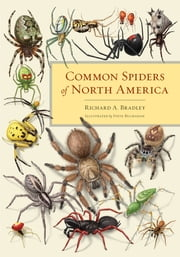 Common Spiders of North America ebook by Richard A. Bradley