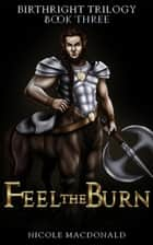 Feel the Burn - The BirthRight Trilogy, #3 ebook by Nicole MacDonald