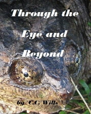Through the Eye and Beyond ebook by C.C. Wills