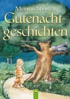 Meine schönsten Gutenachtgeschichten - Dreizehn fantasievolle Geschichten mit stimmungsvollen Illustrationen ebook by Annette Huber, Doris Jäckle, Sabine Streufert,...