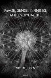 Image, Sense, Infinities, and Everyday Life ebook by Michael Eigen