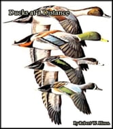 Ducks at a Distance ebook by Robert W. Hines
