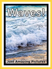 Just Wave Photos! Big Book of Photographs & Pictures of Ocean Sea Water Waves, Vol. 1 ebook by Big Book of Photos
