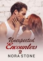 Unexpected Encounters 2 - Encounter Series, #2 ebook by Nora Stone