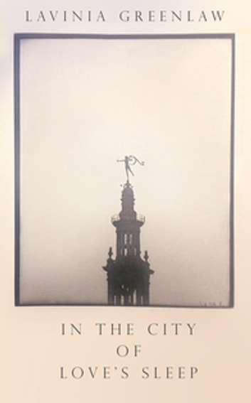 In the City of Love's Sleep ebook by Lavinia Greenlaw