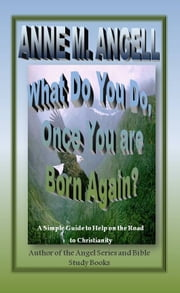 What Do You Do, Once You Are Born Again? ebook by Anne M Angell