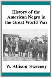 History Of The American Negro In The Great World War ebook by W. Allison  Sweeney