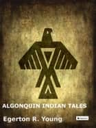 Algonquin Indian Tales ebook by Egerton R. Young