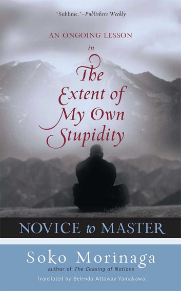 Novice to Master - An Ongoing Lesson in the Extent of My Own Stupidity ebook by Soko Morinaga