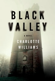 Black Valley - A Novel ebook by Charlotte Williams