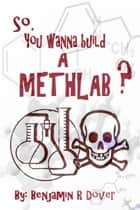 So, You Wanna Build A Methlab? ebook by Benjamin R Dover