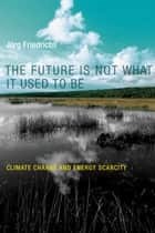 The Future Is Not What It Used to Be ebook by Jörg Friedrichs