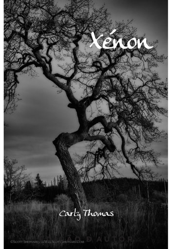 Xénon ebook by