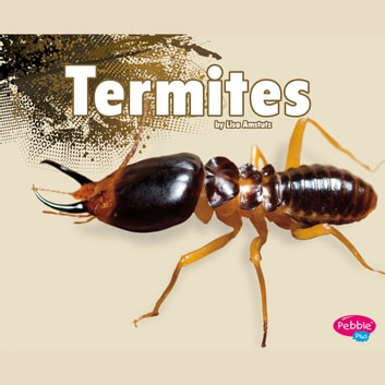 Termites audiobook by Esther Porter
