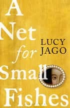 A Net for Small Fishes ebook by