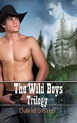 The Wild Boys Trilogy