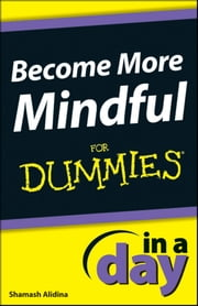 Become More Mindful In A Day For Dummies ebook by Shamash Alidina