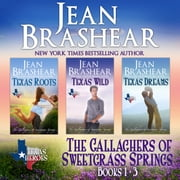 Gallaghers of Sweetgrass Springs Boxed Set One, The - Books 1-3 audiobook by Jean Brashear