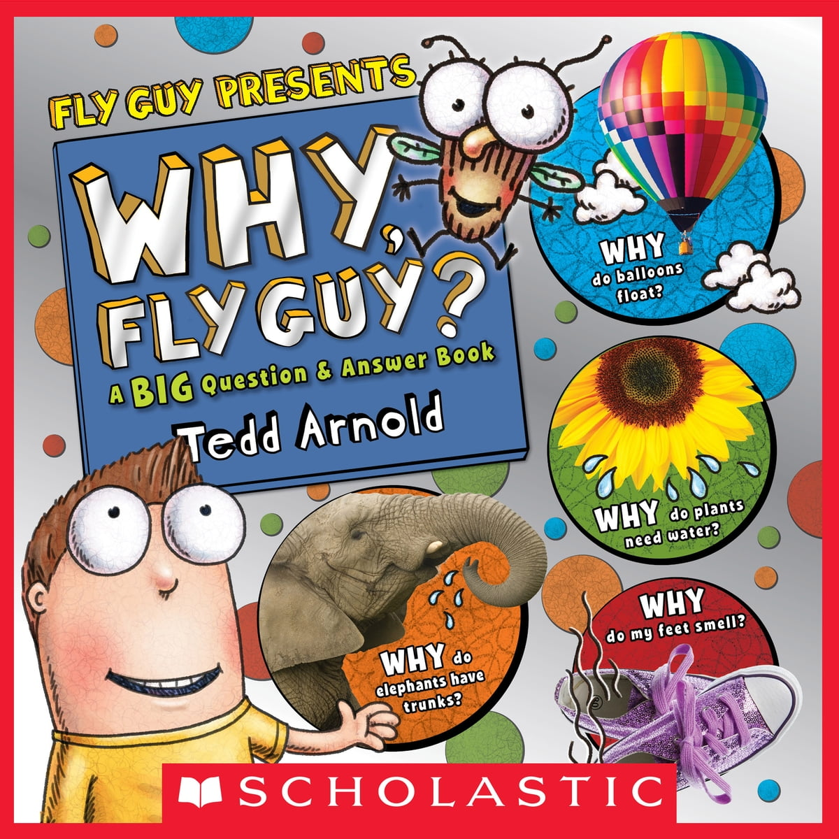 why fly guy answers to kids u0027 big questions fly guy presents