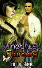 Amethyst Flames ebook by Trinity Blacio