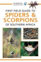 First Field Guide to Spiders & Scorpions of Southern Africa ebook by Tracey Hawthorne
