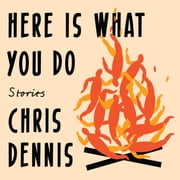 Here Is What You Do - Stories audiobook by Chris Dennis