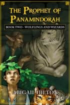 The Prophet of Panamindorah, Book 2 Wolflings and Wizards - The Prophet of Panamindorah, #2 ebook by Abigail Hilton