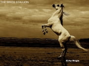 The White Stallion ebook by Kirby Wright