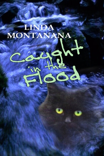 Caught in the flood ebook by Linda Montanana