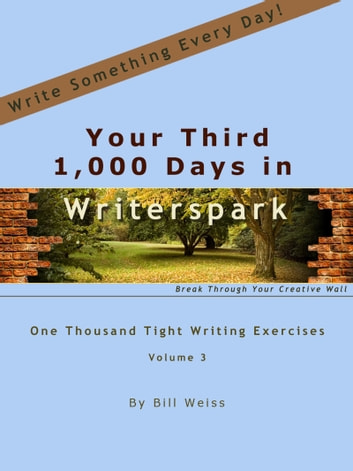 Your Third 1,000 Days in Writerspark ebook by Bill Weiss