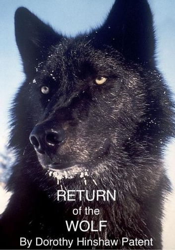 Return of the Wolf ebook by Dorothy Patent