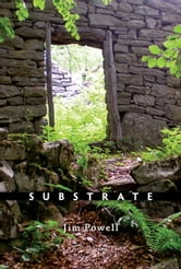 Substrate - Poems ebook by Jim A. Powell