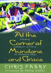 At the Corner of Mundane and Grace - Finding Glimpses of Glory in Ordinary Days ebook by Christopher H. Fabry