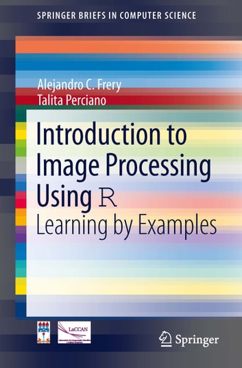 Introduction to Image Processing Using R - Learning by Examples ebook by Alejandro C. Frery,Talita Perciano