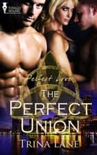 The Perfect Union ebook by Trina Lane