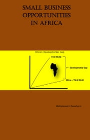 Small Business Opportunities in Africa ebook by Babatunde Osunbayo