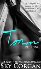 Torn (An Alpha Billionaire Romance) ebook by Sky Corgan