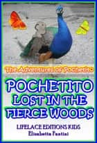 Pochetito Lost in the Fierce Woods (Illustrated) (The Adventures of Pochetito) ebook by Elisabetta Fantini