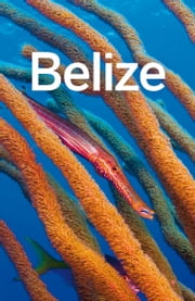 Lonely Planet Belize ebook by Lonely Planet,Joshua Samuel Brown,Mara Vorhees