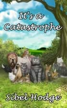 It's a Catastrophe ebook by Sibel Hodge