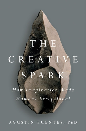 The Creative Spark - How Imagination Made Humans Exceptional ebook by Agustín Fuentes