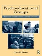 Psychoeducational Groups - Process and Practice ebook by Nina W. Brown