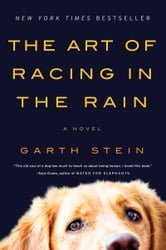 The Art of Racing in the Rain - A Novel ebook by Garth Stein