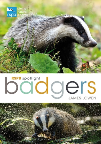 RSPB Spotlight: Badgers eBook by James Lowen