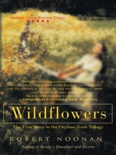 Wildflowers - The First Story in the Orphan Train Trilogy ebook by Robert Noonan