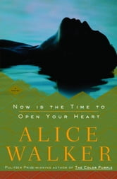 Now Is the Time to Open Your Heart - A Novel ebook by Alice Walker