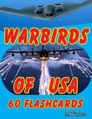Warbirds of USA 60 Flashcards ebook by Michael Turner