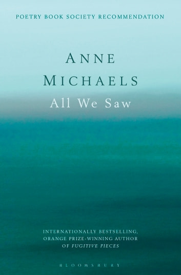 All We Saw ebook by Anne Michaels