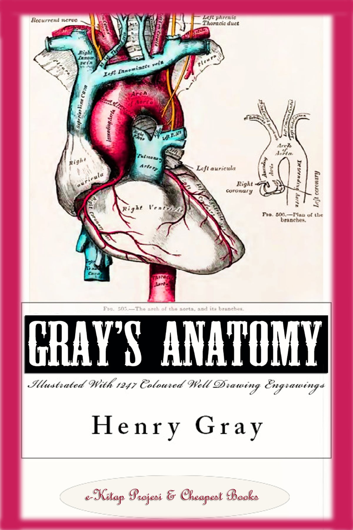 Gray\'s Anatomy (Illustrated With 1247 Coloured Well Drawing ...